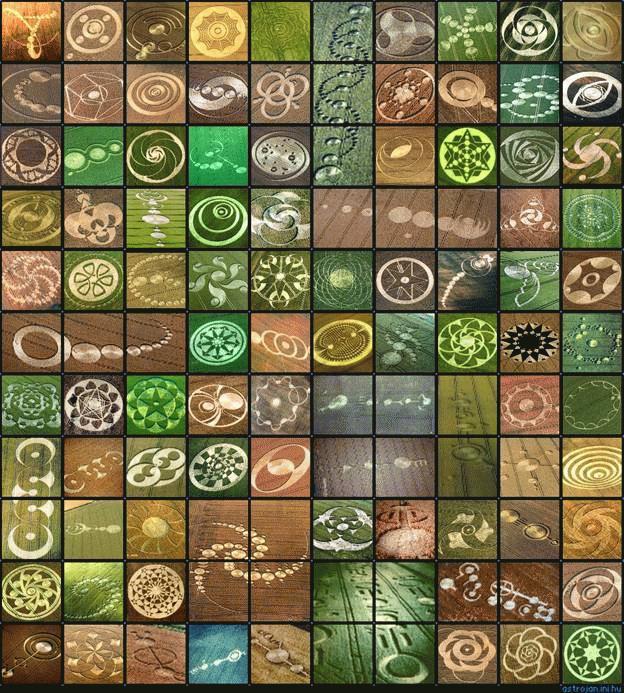 Một số crop circle có hình dạng đẹp và phức tạp