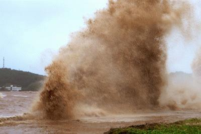 Cận cảnh bão số 1 qua ảnh Images2001037_a10_copy