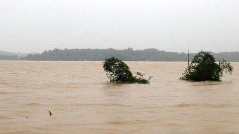 http://images.vietnamnet.vn/dataimages/201010/original/images2046266_a11.jpg