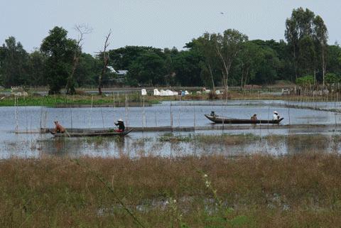 Vùng lũ An Phú (khu vực giáp Camphuchia ) vốn sôi động với cảnh ghe xuồng đánh bắt cá đông đúc vào mùa lũ nay cũng đìu hiu.