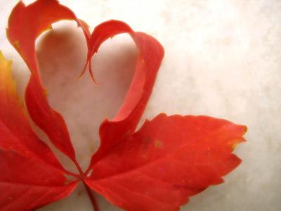 Blog Radio 157: Có phải mùa thu giấu em (bản mới)